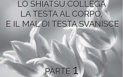 LO SHIATSU COLLEGA LA TESTA AL CORPO,  E IL MAL DI TESTA SVANISCE parte 1