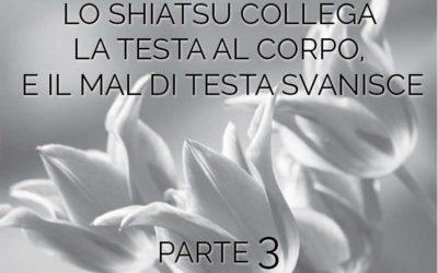 LO SHIATSU COLLEGA LA TESTA AL CORPO,  E IL MAL DI TESTA SVANISCE parte 3